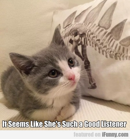 It Seems Like She's Such a Good Listener