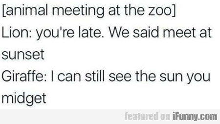 Animal Meeting At The Zoo - Lion - You're Late...