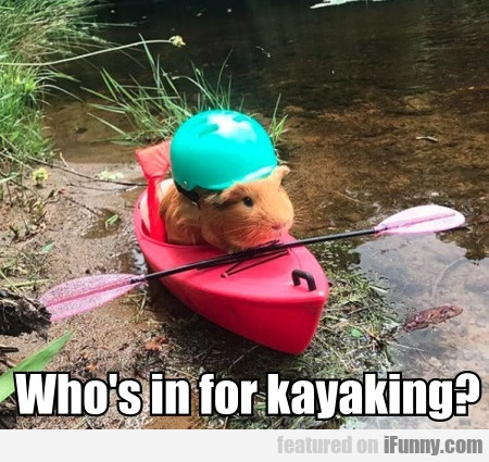 Who's in for kayaking