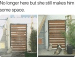No Longer Here But She Still Makes Him Some Space