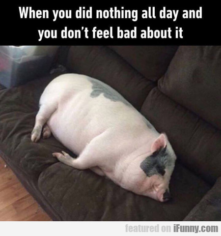 When You Did Nothing All Day And You Don't Feel...
