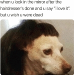 When You Look In The Mirror After The...