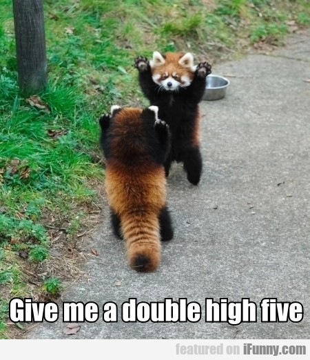 Give me a double high five