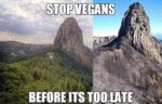 Stop Vegans - Before It's Too Late