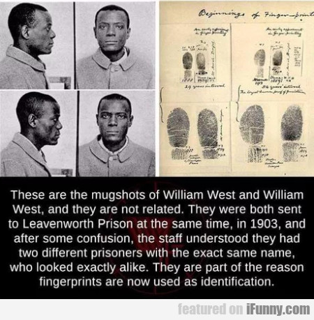 These are the mugshots of William Nest and...
