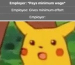 Employer - Pays Minimum Wage - Employee...