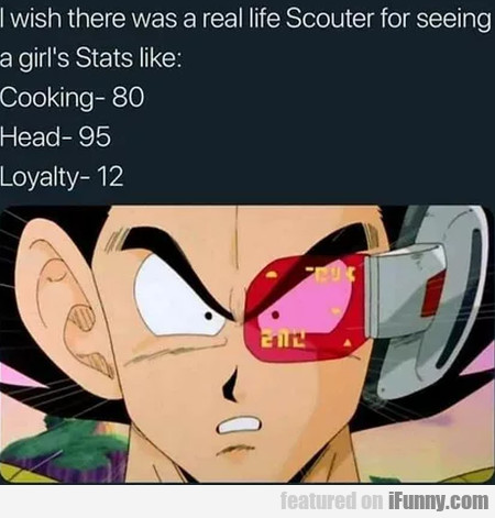 I wish there was a real life Scouter for...