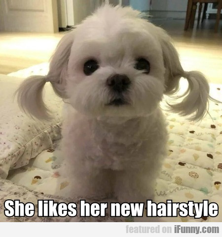 She Likes Her New Hairstyle
