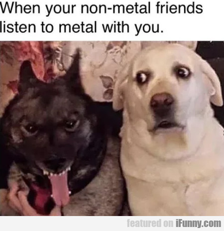 When Your Non-metal Friends Listen To Metal