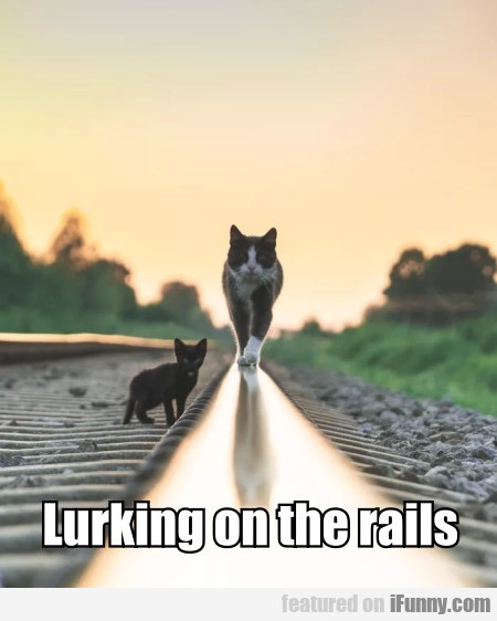 Lurking On The Rails