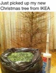 Just Picked Up My Christmas Tree From Ikea