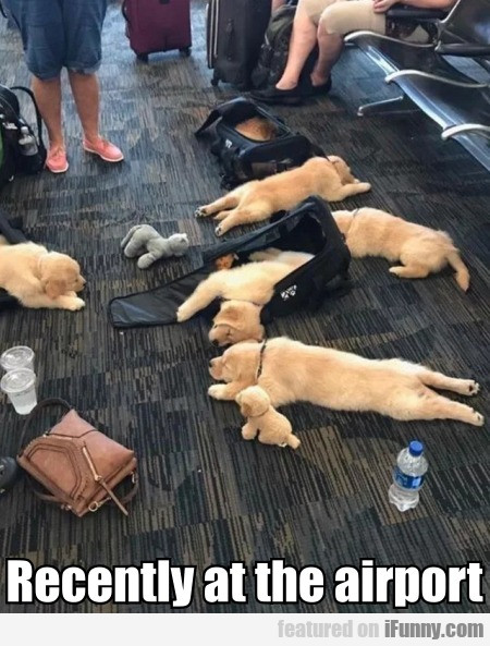 Recently At The Airport