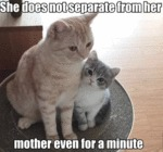 She Does Not Separate From Her Mother Even For...