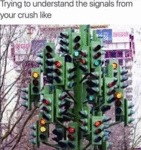 Trying To Understand The Signals From Your Crush