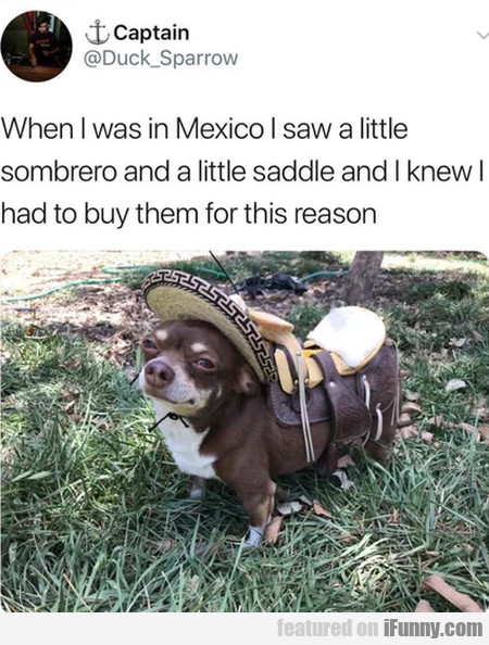 When I Was In Mexico I Saw A Little Sombrero And..