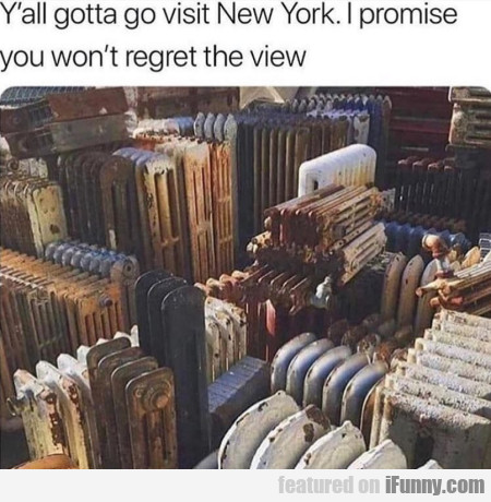 Y'all gotta go visit New York. I promise you...