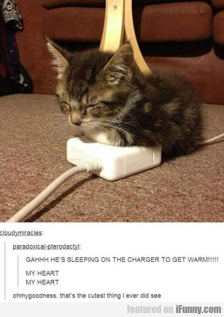 Gahhh he's sleeping on the charger to get warm...