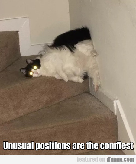 Unusual Positions Are The Comfiest