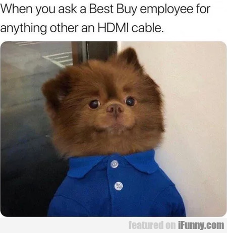 When You Ask A Best Buy Employee For Anything...