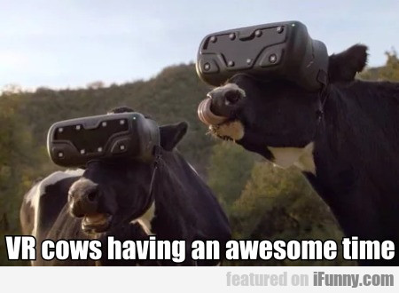 Vr Cows Having An Awesome Time