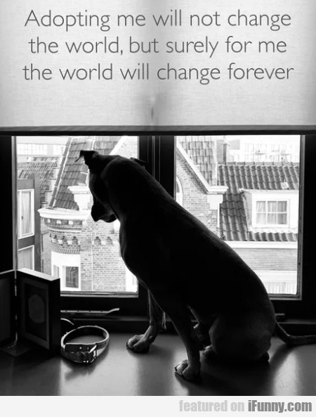 Adopting Me Will Not Change The World But Surely..