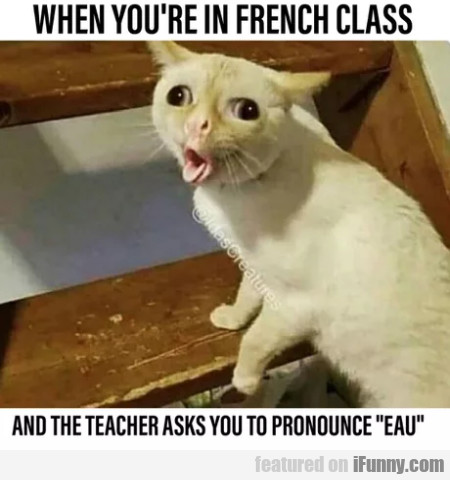 When You're In French Class And The Teacher Asks..