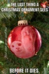 The Last Thing A Christmas Ornament Sees Before...