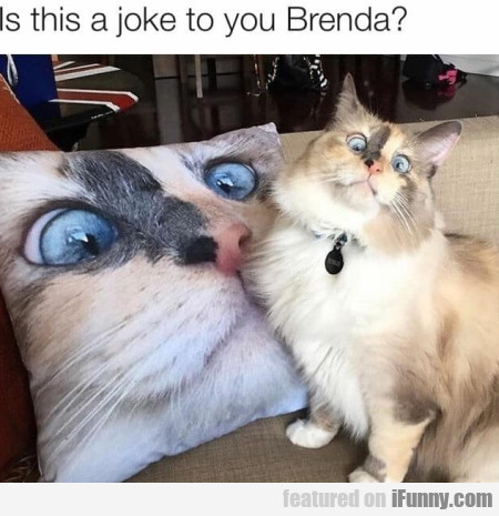 Is this a joke to you Brenda