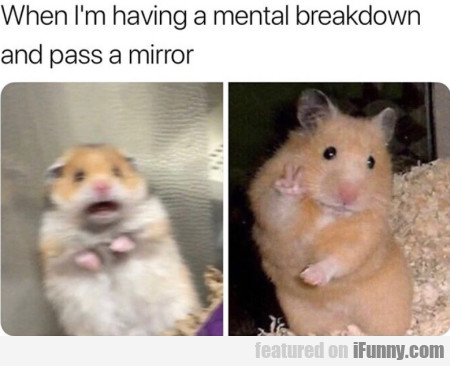 When I'm Having A Mental Breakdown And...