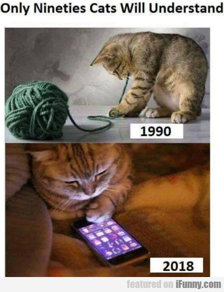 Only nineties cats will understand...