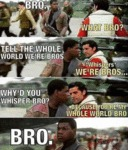 Bro - What Bro - Tell The World We're Bros...