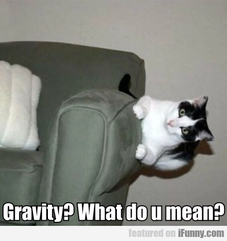 Gravity - What do u mean