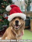 Good Boy Does A Santa Claus