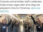 Colorado Animal Shelter Staff's Celebrates...