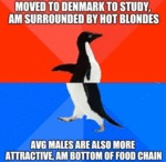 Moved To Denmark To Study, Am Surrounded By...