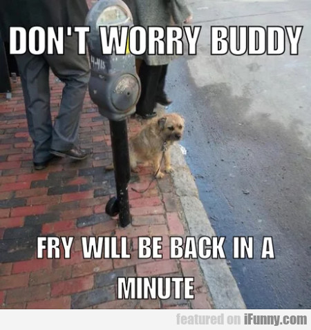 Don't Worry Buddy - Fry Will Be Back In A Minute..