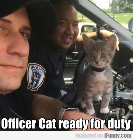 Officer Cat Ready For Duty