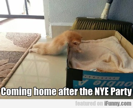 Coming home after the NYE Party