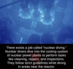 There Exists A Job Called Nuclear Diving...