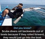 Did You Know - Scuba Divers Roll Backwards...
