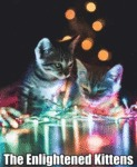 The Enlightened Kittens