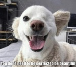 You Don't Need To Be Perfect To Be Beautiful