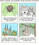 Which Animal Has Inspired Your Succes Strategy?