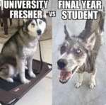 University Fresher Vs Final Year Student