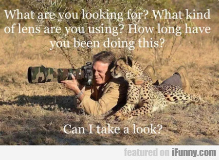 What Are You Looking For - What Kind Of Lens Are..