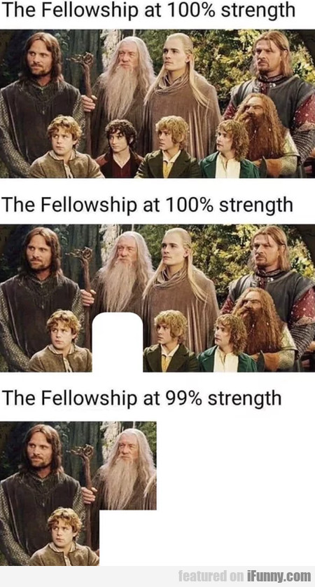 The Fellowship at 100% strength