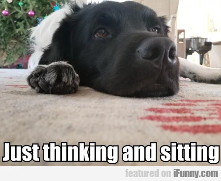 Just Thinking And Sitting