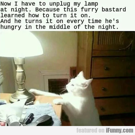 Now I Have To Unplug My Lamp At Night