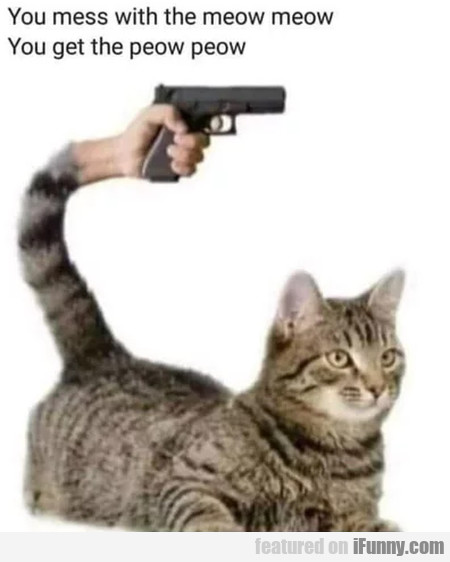 You Mess With Meow Meow You Get The Peow Peow