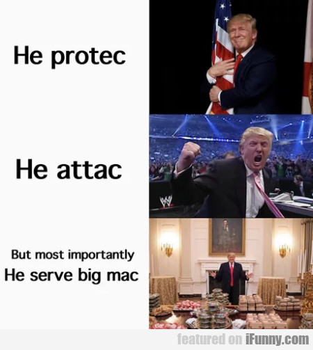 He Protec - He Attac - But Most Importantly He...